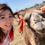 【マラケシュ1日ツアー】ラクダ乗り体験から原住民の町へ