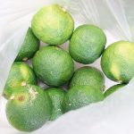 【夏の終わりに挑戦!】新鮮&美味な「自家製柚子胡椒」の作り方