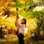 【奥津渓の紅葉に山女魚の塩焼き!】岡山県鏡野町、秋のオススメスポット3選