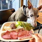 【ドッグメニューがすごい!】「焼肉ぽんがLA」で愛犬と焼肉ランチ